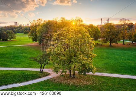 Golden autumn fall October in famous Munich relax place - Englischer Garten. English garden with fallen leaves. Munchen, Bavaria, Germany