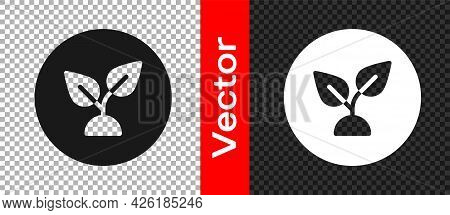 Black Plant Based Icon Isolated On Transparent Background. Vector