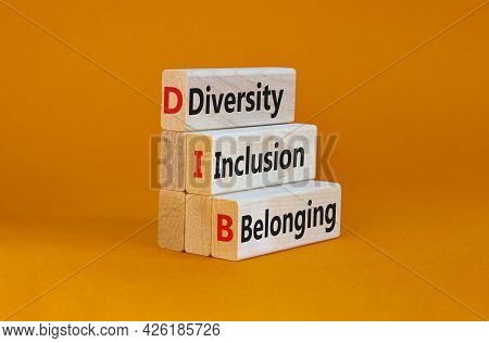 Dib, Diversity, Inclusion And Belonging Symbol. Wooden Blocks With Words Dib, Diversity, Inclusion A