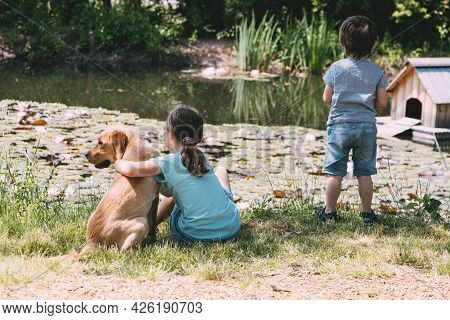A Girl And A Boy, Brother And Sister Play With A Labrador Puppy, A Dog On A Pond, Lake, River. Joint