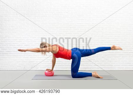 Athletic Caucasian Woman Practice Pilates With Props In Fitness Studio Indoor, Bird Dog Drill With O
