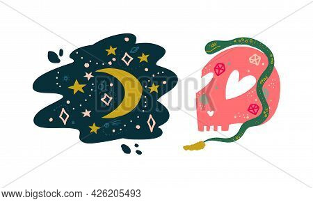 Snake, Skull And Starry Sky As Witchcraft Object For Spells And Performing Magical Rituals Vector Se