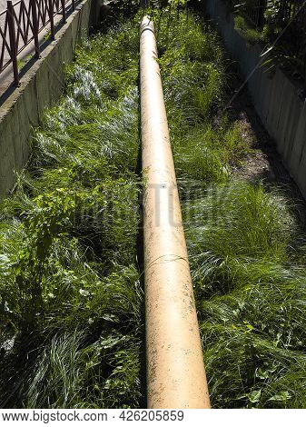 Sewer Pipe Laid In A Ditch Overgrown With Green Dense Grass, Illuminated By The Sun
