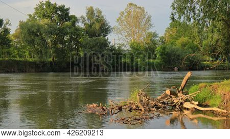 A Landscape Of A River With Green Water And Overgrown Banks, With Roots Nailed Down By The Current.