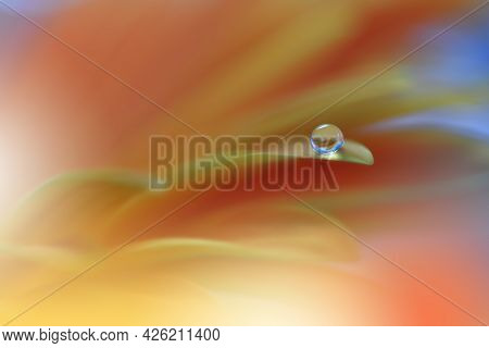 Beautiful Macro Shot of Magic Flowers.Border Art Design.Magic Light.Extreme Close up Photography.Conceptual Abstract Image.Yellow and Orange Background.Fantasy Art.Creative Wallpaper.Beautiful Nature Background.Amazing Spring Flower.Water Drop.Copy Space.