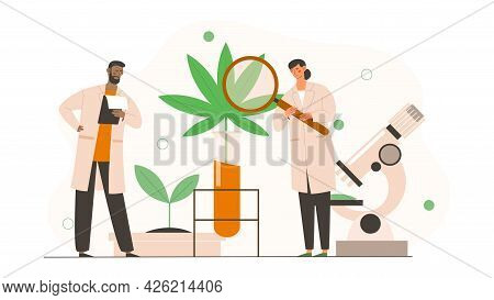 Male And Female Scientists In Uniform Are Analyzing Cbd Hemp Oil Extract From Marijuana Plant. Resea