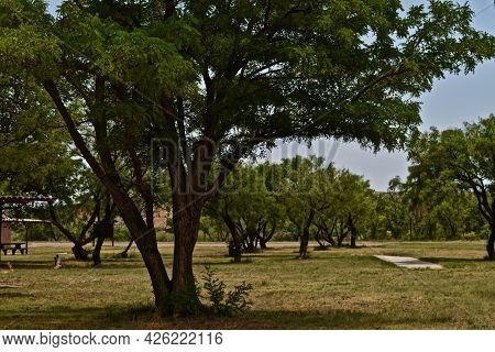 Picnic Area At Lake Meredith National Recreation Area Near Fritch In The Texas Panhandle.