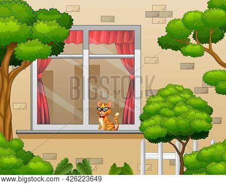 Outside View With A Cat In The Window