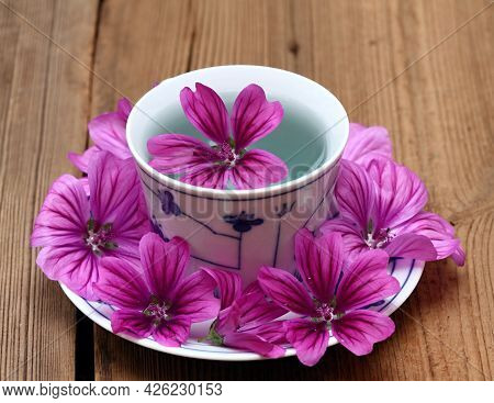 Herbal Tea From Fresh Flowers Of  Wild Mallow, Lat.  Malva Sylvestris. Medicinal Herb Has Been Used