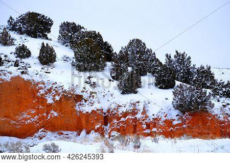 Ridgeline cliff of red sandstone and cedar trees in fresh winter snow
