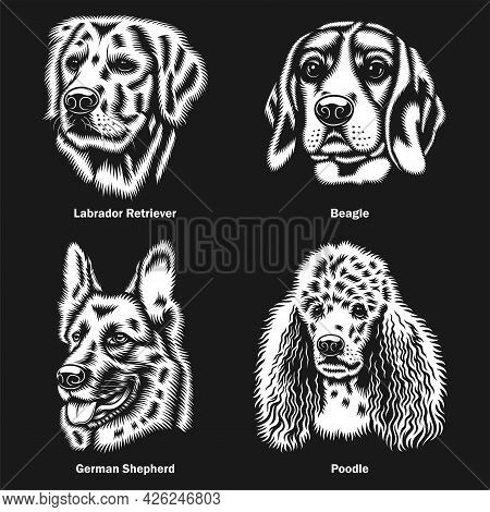 Dog Heads Of Different Breeds Vector Graphic On Black