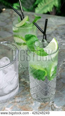 Cocktail Gin Tonic Or Mojito In Glass With Mint, Ice, Lime On The Tropical Leaves Background.