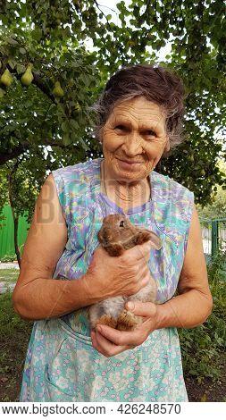 Senior Woman Holds Little Rabbit In Her Elderly Hands. Smiling 80s Granny In Summer Garden. Grandmot
