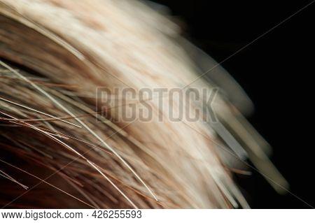 Healthy Hair Background Theme