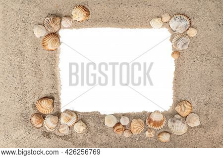 Frame Of Ribbed Shells Of Different Sizes Laid Out On A Sandy Surface With Copy Space In The Middle