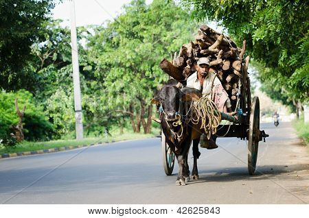 Traditional Nature Cargo Transport, Sri Lanka