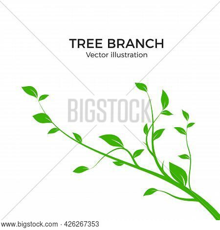 Branch Silhouette Isolated On White Background. Green Tree Branch With A Lot Of Leaves. Vector Illus