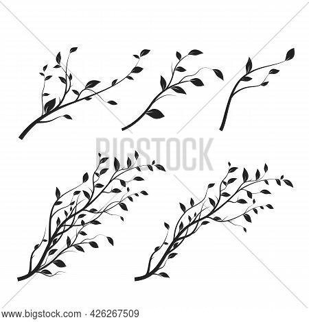 Set Of Tree Branch. Branch Silhouette Isolated On White Background With A Lot Of Leaves. Vector Illu