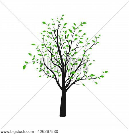 Black Tree Silhouette With Green Leaves Isolated On White Background. Vector Illustration