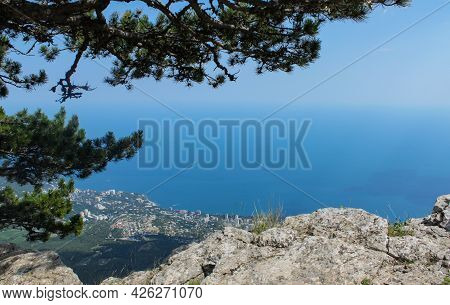 Top View From The Mountain To The Sea And The City Below. On The Left On The Mountain Is A Pine Tree
