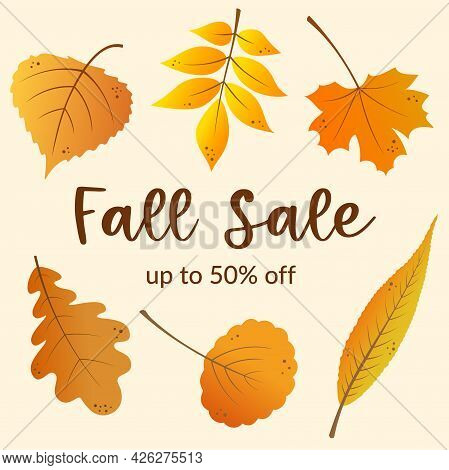 Autumn Sale Banner Template Design With Fall Golden Leaves Background. Vector Illustration.