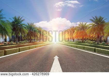 Road,black Asphalt Road And White Line Sign With Green Plam Tree Roadside And Blue Sky Background,co