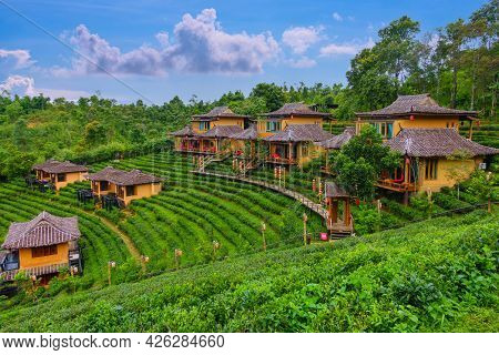 Old Chinese Style House In Tea Plantation At Ban Rak Thai The Village Is Surrounded By Mountain In M