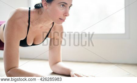Sportive woman doing elbow plank on the floor