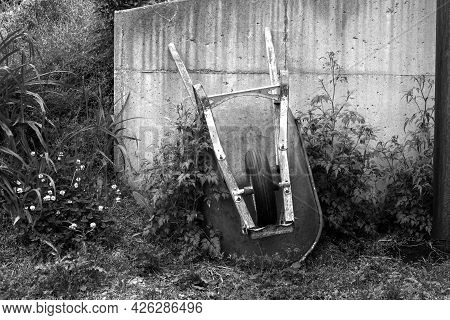 An Old Wheel Barrow Leans Against A Cement Wall Surrounded By Overgrowth Of Weeds And Flowers In A M