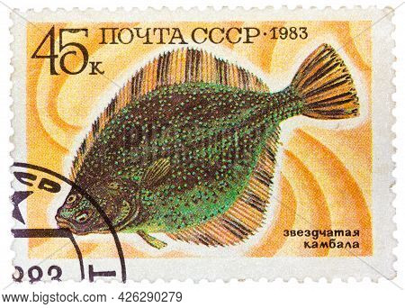 Russia - Circa 1983: Stamp Printed By Russia, Shows Underwater Fish Flounder, Circa 1983