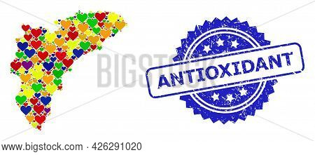 Blue Rosette Rubber Stamp With Antioxidant Title. Vector Mosaic Lgbt Map Of Alicante Province Of Lov
