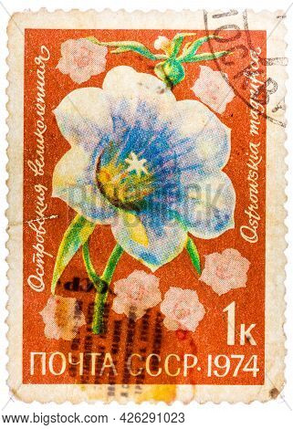 Russia - Circa 1974: Morning Glory Is A Common Name For Over 1, 000 Species Of Flowering Plants In T
