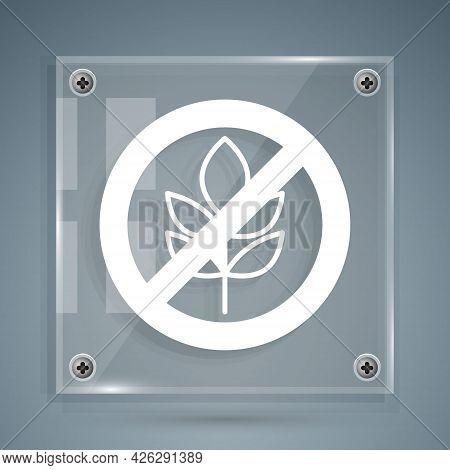 White Gluten Free Grain Icon Isolated White Background. No Wheat Sign. Food Intolerance Symbols. Squ