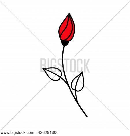 Rosebud. Red Rose. Valentine's Day. Declaration Of Love. Happy Birthday. Vector Hand Drawn Illustrat