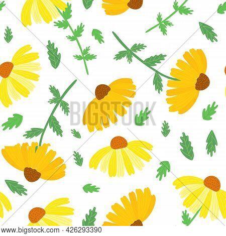 Rudbeckia Garden Flower Seamless Pattern, Black-eyed Susan Vector Simple Repeat Ornament In Orange,