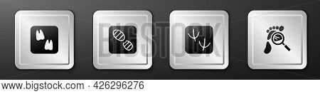 Set Camel Paw Footprint, Human Footprints Shoes, Dove And Magnifying Glass With Footsteps Icon. Silv