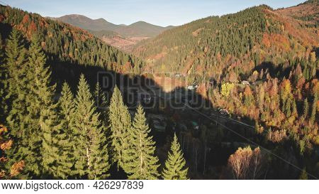 Closeup autumn mountain forest aerial. Nobody nature countryside landscape. Fir pine and spruce trees at colorful leaves. Cottage at village road in mount valley. Carpathians, Ukraine, Europe