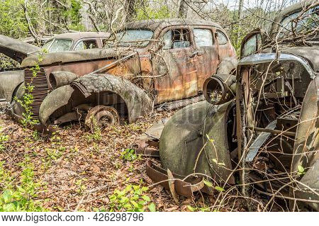 A Couple Of 1940's Vintage Cars Abandoned In The Woods To Rot And Decay Leaving Nature To Take Over