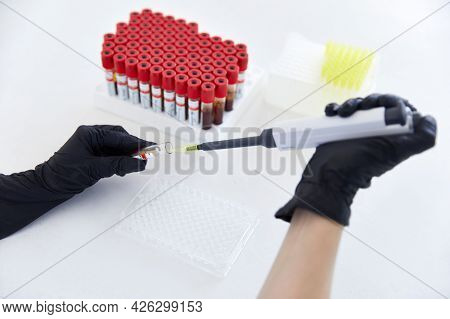 Lab Technician With Tube Of Blood Sample And Rack With Other Samples. Holding Blood Tube Sample For