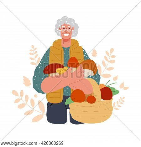 Old Woman Hold A Basket With Mushrooms.picking, Hunting Mushrooms In The Fall Forest.active Seniors.
