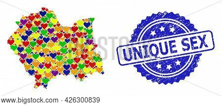 Blue Rosette Grunge Stamp With Unique Sex Text. Vector Mosaic Lgbt Map Of Lesser Poland Province Wit