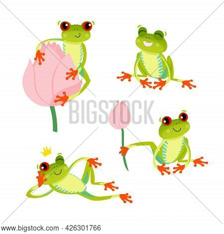 Set Of Cute Red Eyed Frogs. Tree Frog In Different Poses. Vector 10 Eps Illustration. Isolated On Wh