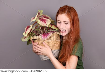 Woman With Red Hair Hugging Tropical Caladium Houseplant In Flower Pot