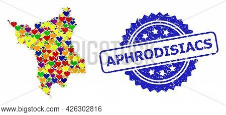 Blue Rosette Scratched Seal With Aphrodisiacs Title. Vector Mosaic Lgbt Map Of Roraima State With Lo