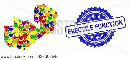 Blue Rosette Scratched Seal Stamp With Erectile Function Text. Vector Mosaic Lgbt Map Of Zambia From