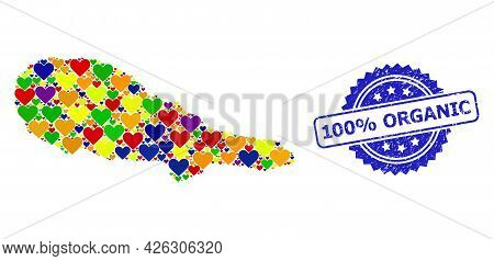 Blue Rosette Textured Seal Stamp With 100 Percent Organic Caption. Vector Mosaic Lgbt Map Of Pico Is