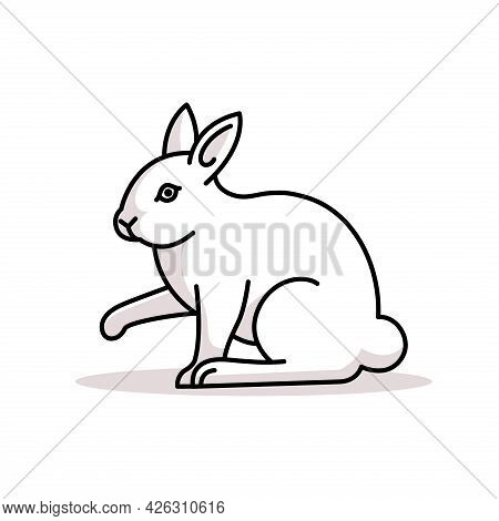 Rabbit. Rabbit Illustration. Rabbit Vector. Rabbit Icon. Rabbit Logo. Rabbit Outline Graphic. Rabbit