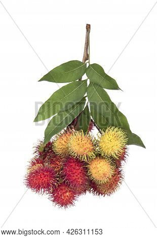 A Rambutan Isolated On A White Background