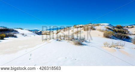 White gypsum sand of the desert with snow