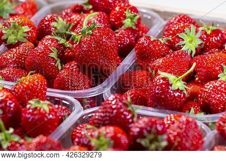 Strawberries, Red Juicy Ripe Strawberries, Close-up, Delicious Summer Berries. Background Of Fresh H